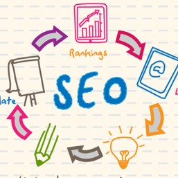 Why is SEO imortant for growing your business?