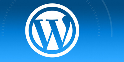 WordPress Web Development We Are Immediate