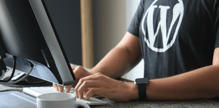 What Is WordPress web development