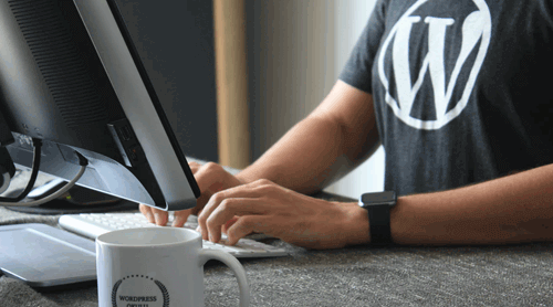 wordpress-web-development-we-are-immediate
